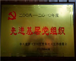 2008先进基层党组织